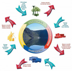 sustainable life cycle